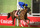 Hunter's Light Dominant in Jebel Hatta Win