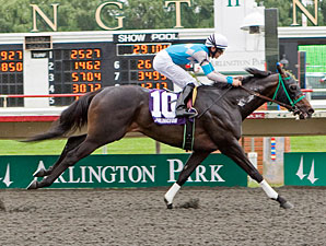 Hydro Power wins the 2011 Springfield Stakes.