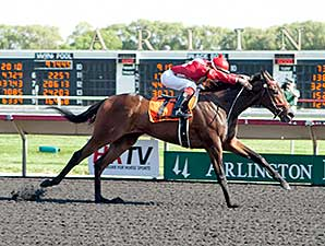 I Got It All wins the 2014 Springfield Stakes.