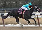 Steve Haskin's Derby Dozen - 03/24/09