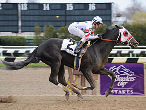 I Want Revenge Back in Training in Kentucky