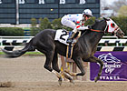 I Want Revenge Arrives at Churchill