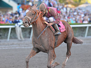 Ice Box wins the 2010 Florida Derby.
