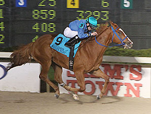 Ide Be Cool wins the 2014 LA-Bred Premier Night Prince.