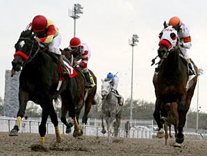 Ide Like A Double wins the 2010 Costa Rising.