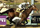 Idiot Proof BC Sprint Bound After Ancient Title Scorcher