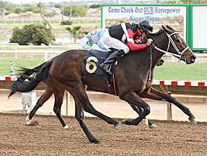 Idling wins the 2013 Arizona Juvenile Fillies Stakes.