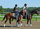 Haskin's Belmont Report: Crown Harder Now