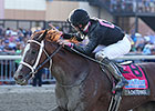 I'm a Chatterbox Rallies to Cotillion Victory