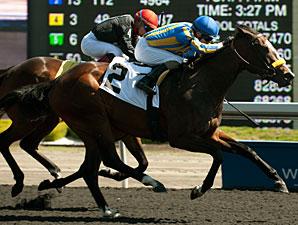 I'm a Kittyhawk wins the 2013 Lady Angela Stakes.