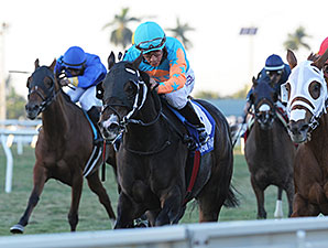 I'm Already Sexy wins the 2015 Cooper City Handicap.