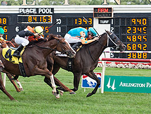 I'm Already Sexy wins the 2014 Modesty Handicap.