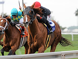 Imagining wins the 2015 Pan American Stakes.