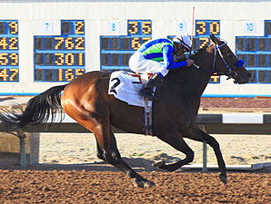 Imco Spirit wins the 2012 Inaugural Handicap.