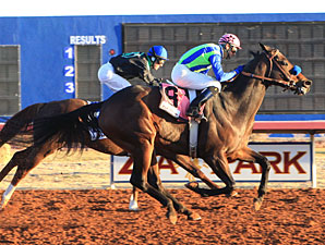 Imco Spirit Named Zia Park Horse of the Meet