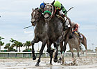 Imperial Czar Wins Off-the-Turf Miami Mile