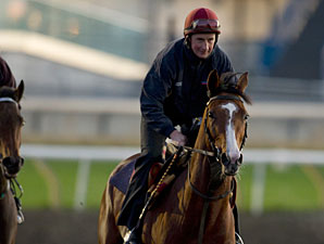 Imperial Monarch - Woodbine, October 12, 2012
