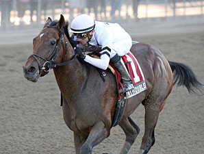 In Trouble wins the 2013 Futurity Stakes.