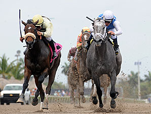 In Tune wins the 2014 Gulfstream Oaks.
