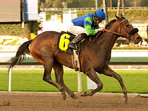 Include Me Out in the La Canada Stakes.