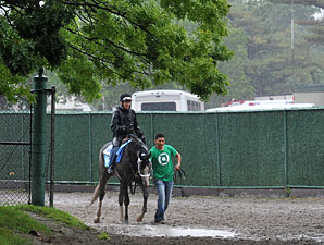 Incognito - Belmont Park, June 7, 2013.