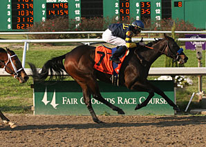 Indian Blessing Favorite in FG Oaks