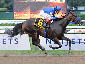 Indian Blessing Tries Older Horses
