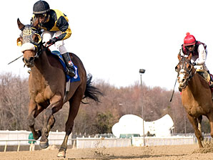 Indian Dance wins the 2010 Harrison Johnson Memorial Stakes.