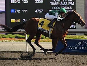 Indian Evening wins the 2011 Swynford.