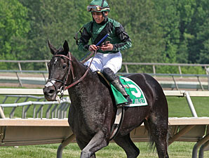 Indian Legend wins the 2011 My Juliet Stakes.