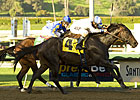 Santa Anita Derby Field Taking Shape