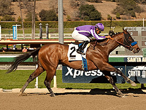 Indianapolis wins the 2014 San Pedro Stakes.