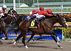 Indiano Turns the Tables in Mr. Prospector