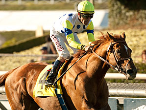 Mandella Figures He's Due in $3 Million Turf