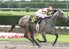 Fast Filly Indyanne Euthanized