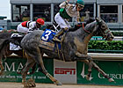 Informed Decision Takes Humana Distaff