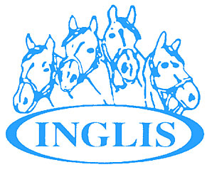 Written Tycoon Filly Sets Pace at Inglis Sale