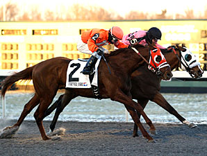Lots of Ways to Go in Turfway's WEBN Stakes