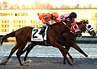 Inhisglory Shows Heart in Turfway Prevue Win