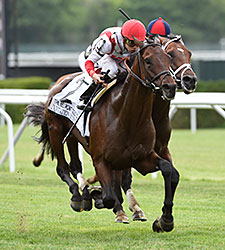 Innovation Economy wins the 2015 Belmont Gold Cup Invitational.