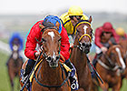 Integral Flies to Victory in Falmouth Stakes