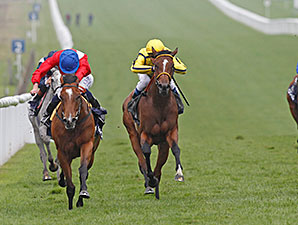 Integral wins the 2014 QIPCO Falmouth Stakes.