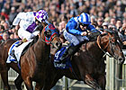 Focus Prevails in Dewhurst Thriller