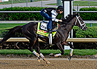 Intense Holiday is Pletcher's Standout