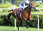 Interactif Impressive in Turf Debut