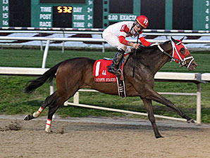International Star wins the 2015 Lecomte Stakes.