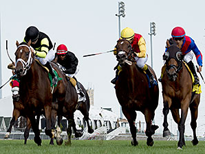 Interpol wins the Sky Classic Stakes.