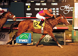 Three to Stand at Spendthrift