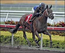 No Stopping Invasor in Donn Handicap