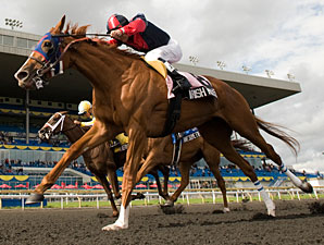Improving Irish Mission Claims Woodbine Oaks